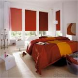 Roller Blinds Printed Window Roller Blinds Shutter Roller Blinds