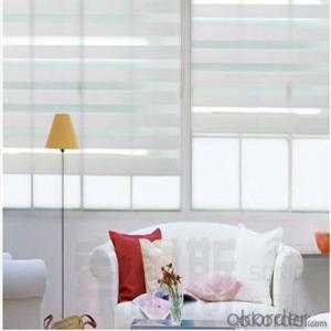 Motorized Perforated Roller Zebra Blinds