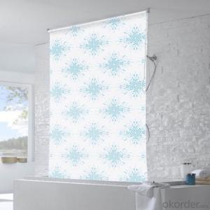 Printed Privacy Roller Mechanism Window Blinds
