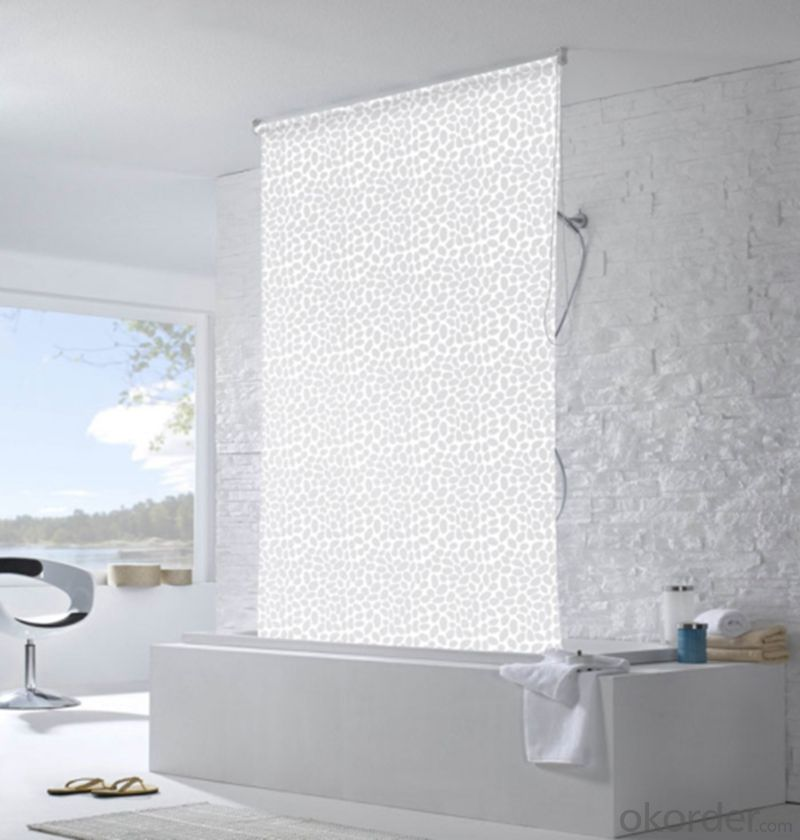 Outside One Way Vision Roller Shade Blinds