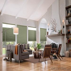 Transparent PVC Somfy Electric Roller Shades
