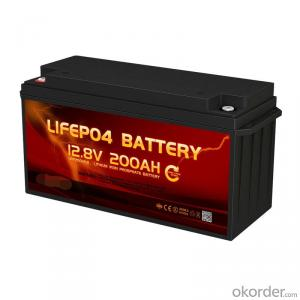 Source Factory Deep Cycle LiFePO4 Lithium ion Battery 12V 100Ah for Solar system/RV/Motorhome/Boat