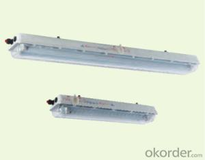 ATEX BAY51 Series Explosion-proof Light Fittings for Fluorescent Lamp