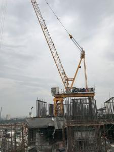 TCD6037 12T 16T 18T Tower Crane Luffing Cranes