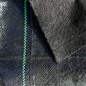 Weed Barrier Fabric or Capped Woven Fabric for Agriculture
