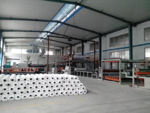 PVC Waterproof Membrane/PVC Membrane/PVC Roof Membrane