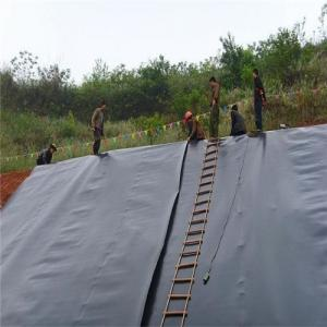 HDPE/ LDPE/LLDPE Geomembrane or Waterproof membrane