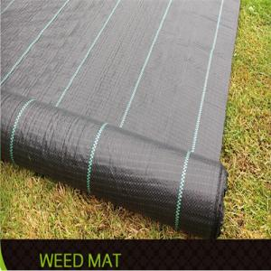 Ground Cover or Polypropylene Woven Geotextile for Agriculture