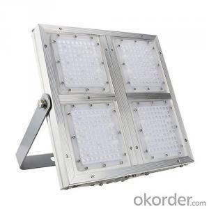 Purple lighting GF9032-L100W  LED floodlight