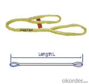 High Tensile Endless Eye Type Round Slings Customers Requiement Webbing Sling Type rh02