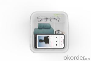 Antibacterial Bath Storage Box Transparent Cover Storange Box