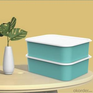 Eco-friendly Antimicrobial Household Goods One Stop Solution Antibacterial Underwear Storage Box