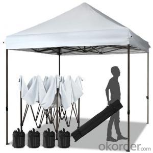 Pop up Foldable Gazebo Aluminium Frame Waterproof Fireproof 10x10 Commercial tent